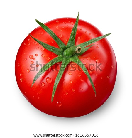 Tomato isolate. Tomato on white background. Tomato with drops top view. With clipping path.