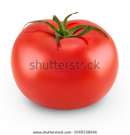 Tomato isolated on white background. High resolution macro photo of fresh tomato plant. Side view. Full depth of field side view.