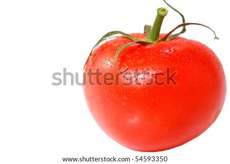 Tomato on white - stock photo