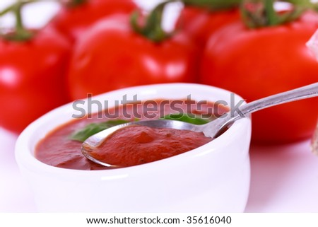 tomato paste and home grown tomatoes on the vine