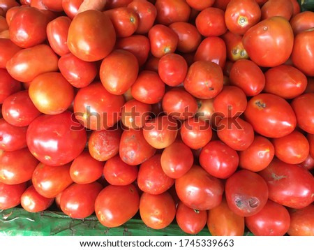 Tomato plants generally have many spreading branches. The leaves are hairy and have a strong smell. The flowers are yellow and hang in clusters. The fruit is about 0.5 to 3 inches (1.3 to 7.6 centimet Stock fotó ©