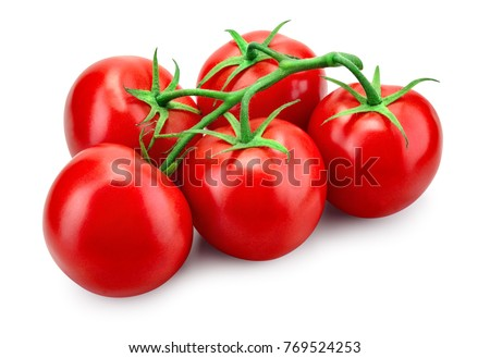 Tomato. Tomato branch. Tomatoes isolated on white. With clipping path. Full depth of field. #769524253