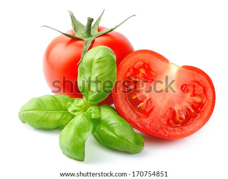 Tomatoes and basil leaves isolated on white close up. Vegetables