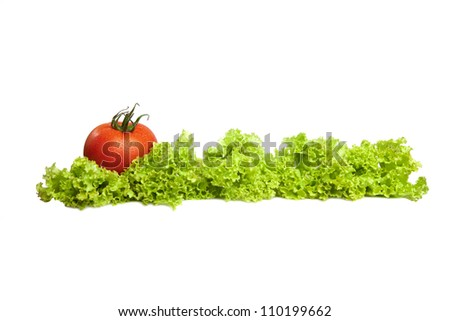 Tomatoes and lettuce on the white background.