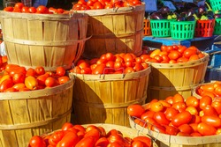 Tomatoes and other vegtables on sale in the Jean-Talon Market Market, Little Italy district, Montreal, Quebec, Canada
