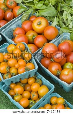 Tomatoes at farmers market, Seattle, Wa, USA