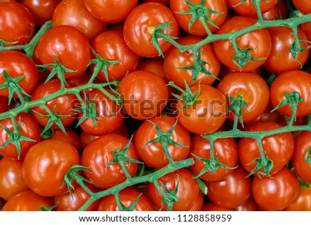 Tomatoes background. Group of red tomatoes.     #1128858959