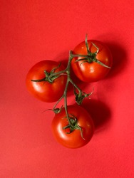 Tomatoes close-up. Red tomatoes on a red plain background, for a restaurant or menu. Healthy Food, Vegetarianism, Diet
