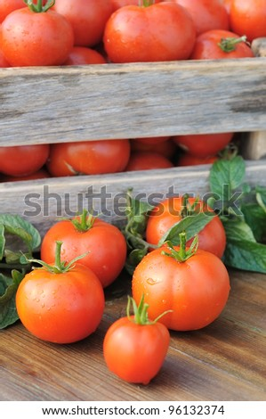 Tomatoes in a box. Ripe tomatoes in a container.