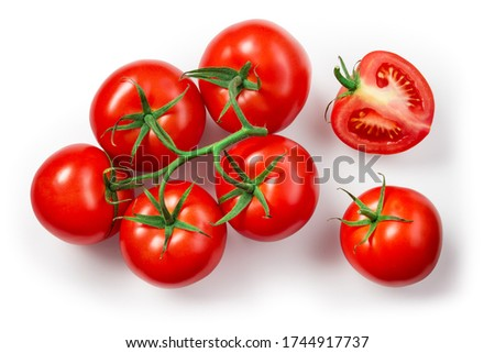 Tomatoes isolated. Tomato branch on white. Top view tomatoes. Tomato set.
