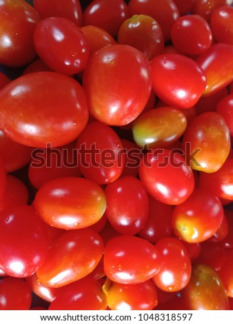 Tomatoes (Scientific name: Lycopersicon esculentum Mill.) is a nutritious nutritious plant. Medium tomatoes contain half the amount of vitamin C in the grapefruit. #1048318597
