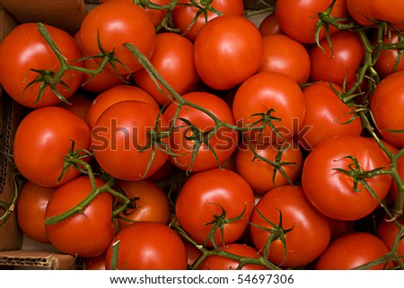 tomatos in box close up look