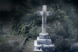 Tombstone in rundown graveyard with tropical plants and vines - cross grave stone
