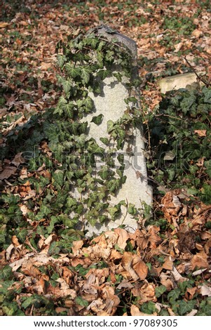 Tombstone on the Prague Jewish Cemetery