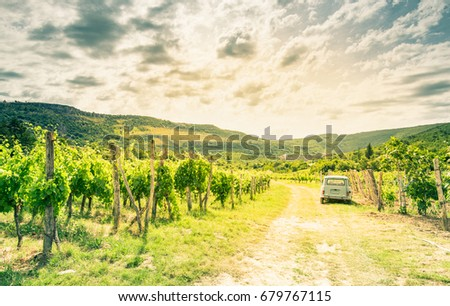Toned image, vineyard and vintage car in Slovenia.