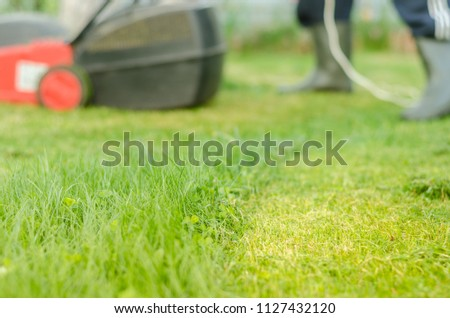 tonsured lawn and the red lawn mower/lawn mower is cleaned from a grass. Selective focus #1127432120