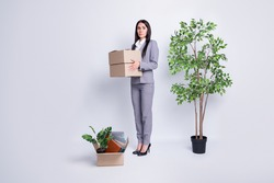 Too much stuff. Full body profile photo of dismissed lady company crisis lost job hold carton box fired stand big plant pot many belongings carry packs isolated grey color background