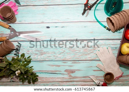 Tools for the garden on a wooden background with space for the background. Gardening - Shutterstock ID 613745867