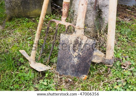 tools for tilling the soil - spade fork and hoe in the vegetable garden