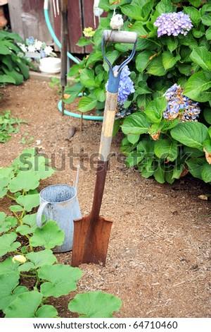 Tools In A Flower Garden Stock Photo 64710460 Shutterstock