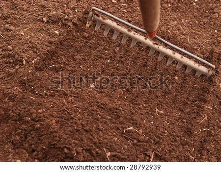 tooth rake preparing the soil for planting
