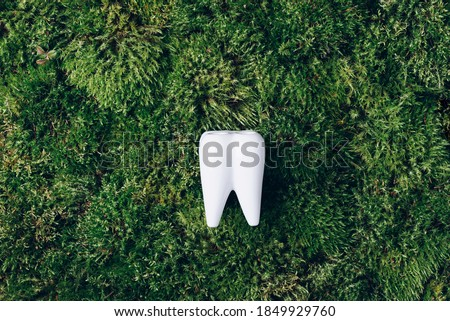 Toothbrush stand shaped primary tooth on green moss background. Top view. Copy space Signboard for stomatology, dentist office or denal care clinic. Oral hygiene. Holistic approach, health concept. Foto d'archivio ©