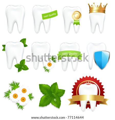Tooths Set, Isolated On White Background