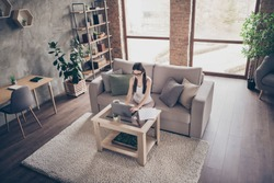 Top above high angle view photo of focused girl manager sit divan work distance laptop search date for start-up development project in house indoors interior