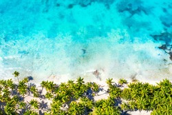 Top aerial drone view of beautiful beach with turquoise sea water and palm trees. Saona island, Dominican republic. Paradise tropical island nature background