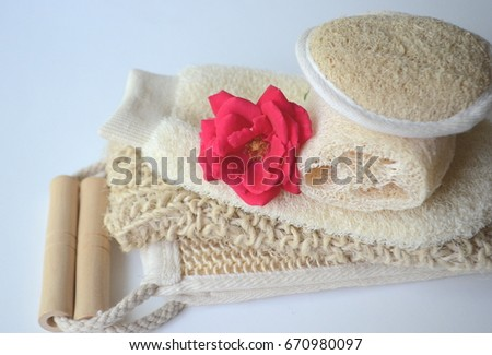 Photo of Top close up view of a set of body massage brushes for dry brushing with a red rose on white