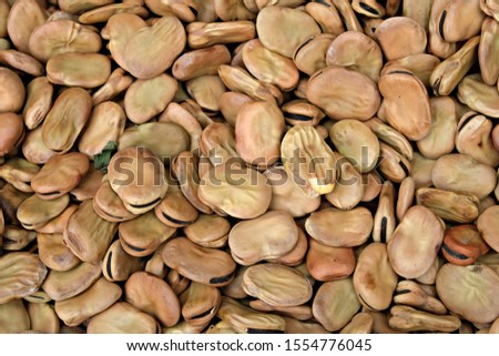 Top close view of dry fava beans