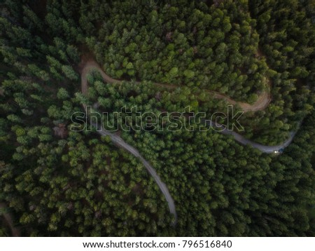Top Down forrest view at Zia mountain village, Kos island, Greece. Road passing through. #796516840