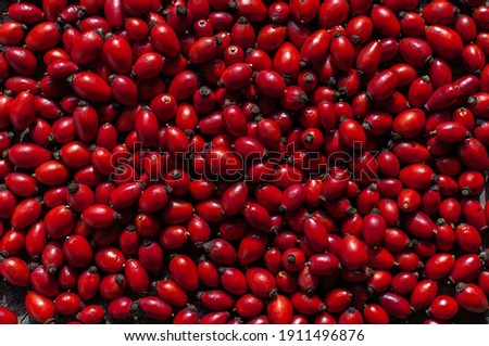 Top down full frame view of dried ruby red rosehips (rosa canina), a fruit from the blossoms of wild rose plants known for its medicinal properties. Also called rose haw,  rose hep and hop fruit.  Stock photo ©