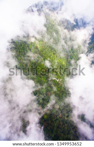 Top down turquoise forest on the mountainside under the clouds- fog (aerial photo with paraglider), summer holidays in the Caucasus in Abkhazia. Saturated color. #1349953652