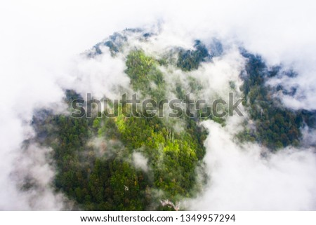 Top down turquoise forest on the mountainside under the clouds- fog (aerial photo with paraglider), summer holidays in the Caucasus in Abkhazia. Saturated color. #1349957294