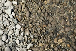 Top down view of a rocky beach with small dry pebbles transitioning to wet rocks, then stones underwater, in a shallow river shore scene