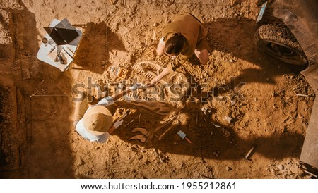 Top-Down View: Two Great Paleontologists Cleaning Newly Discovered Dinosaur Skeleton. Archeologists Discover Fossil Remains of New Species. Archeological Excavation Digging Site. Foto stock ©