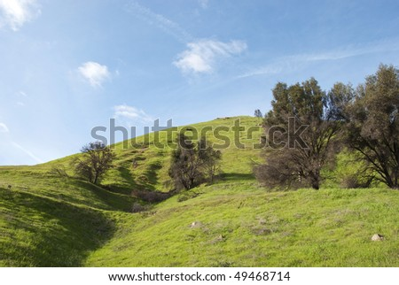 Top of an open hill or mountain in springtime with trees that are still bare from winter and new bright green grasses and breezy clouds in the sky