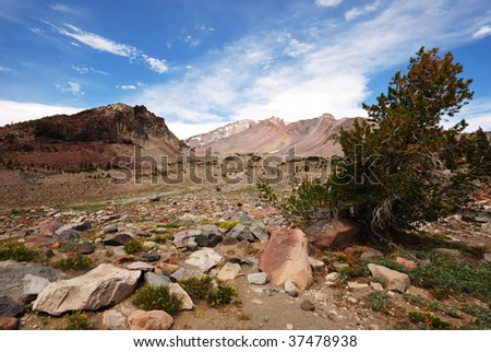Top of Mount Shasta from 7000 feet - stock photo