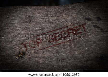 top secret stamp on old wood with fly