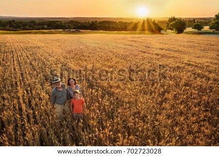 Top view. A farmer, his wife and his son in their wheat field at sunset. They are looking at camera