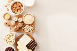 Top view: Alternative sources of plant proteins for Vegan, Plant-based, Vegetarian diet such as tofu, nuts, tempeh, nutritional yeast etc. Higher in fiber, less fat, heart healthy food, nutrient-dense