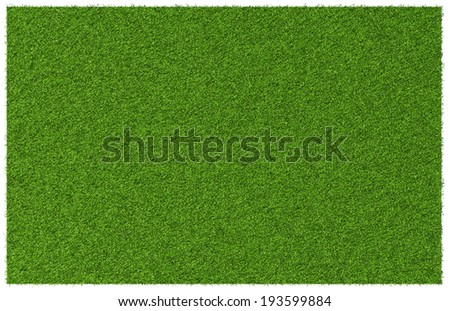 Top view angle of green grass meadow #193599884