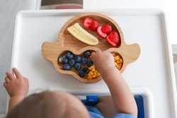 Top view Baby self-feeding with hand BLW or baby led weaning. Finger food plate of mix fruit strawberry, banana, blueberry and corn. Kid healthy nutrition eating on high chair fine motor development.