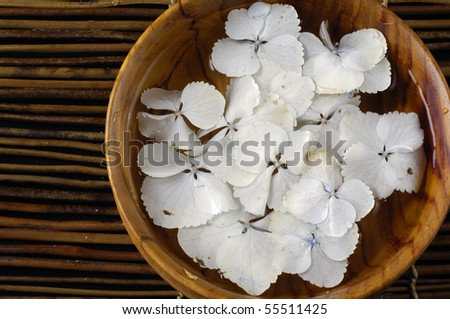 Top view bowl of hydrangea petals