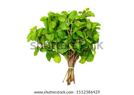 Top view bunch of fresh green peppermint isolated at white background. Foto stock ©