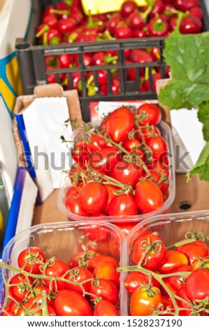 Top view, close distance of a variety of freshly picked tomatoes for sale at a street market Barbaresco, Piedmont region of Italy
