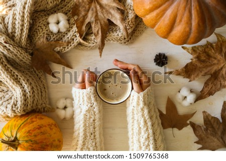 Top view composition with young woman's hands in white sweater, vintage styled cup of coffee and autumn themed decoration, fallen leaves on textured background. Flat lay, copy space. #1509765368