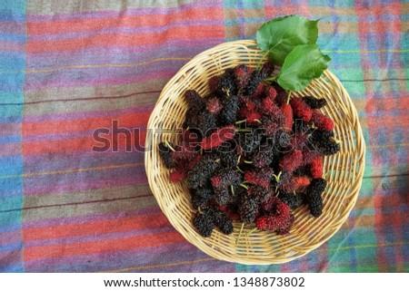 magasin en ligne 89a00 522aa Mulberry basket / blackberry basket / fresh mulberries ...