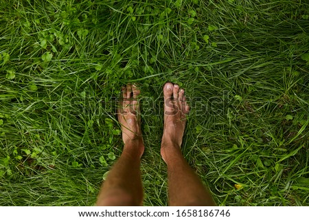 Top view, feet on green grass for background.with copy space. male legs on the green grass. a man stands barefoot on the green grass. vacation Stockfoto ©